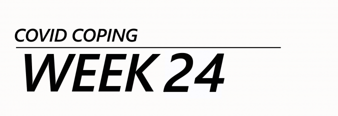 SaskWatch COVID Week 24, Sask COVID-19