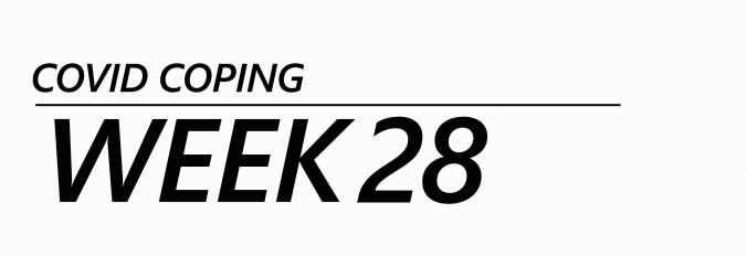 Sask COVID Barometer week 28, SaskWatch Research